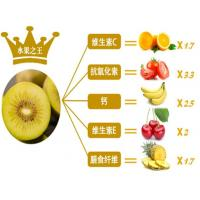 sweeter and more aromatic in flavor the golden kiwifruit of zhou zhi in China