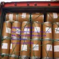 Wholesale International Maritime Dangerous Goods Shipping from china suppliers