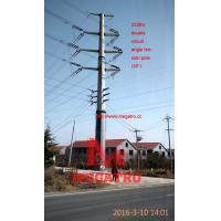 MEGATRO 220KV double circuit angle tension pole (30°),megatro steel pole tower from  CHINA