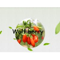 Dried fruit :Goji berry(wolfberry) 280 grain,350grain and 550Grain