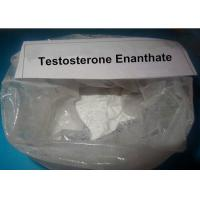 Wholesale Strongest Testosterone Steroid Powder Primoteston Test Testosterone Enanthate Cycle For Promoting metabolism from china suppliers