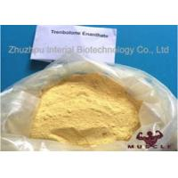 Raw Yellow Crystalline Trenbolone Enanthate Powder , Tren E Steroids For Lean Muscle