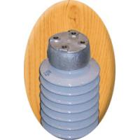 TR Solid-core Station Post Insulator