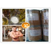 UPS Standard Methyl Stenbolone Muscle Building CAS 5197 58 0 99% Purity