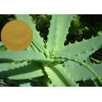 Wholesale Aloe Vera Extract Cosmetic Raw Materials Pure Natural Preventing Cancer / Anti - Aging from china suppliers