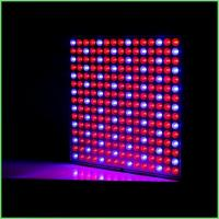 China IP54 Full Spectrum Indoor Plant Grow Lights 32 W For Greenhouse , ABS Material wholesale