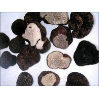 Wholesale Frozen Truffles from china suppliers