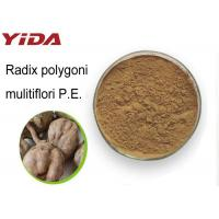 Wholesale Weight Losing Raw Materials He Shou Wu Extract from china suppliers