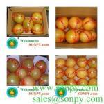 fresh fruit-pomelo