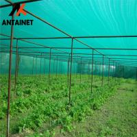 Wholesale ANTAI manufacture HDPE material carport green shade net in China from china suppliers