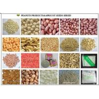 Wholesale Peanuts Series Products from china suppliers