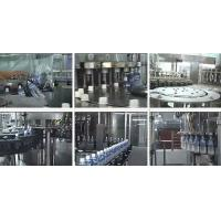China PET Bottle Automatic Liquid Filling Machines / Juice Packaging Equipment wholesale