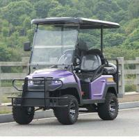 Electric Fuel 4 Wheel Four Person Golf Cart With Rear Seat , Purple Color