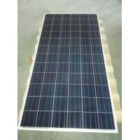 Wholesale low cost 300 watt polycrystalline silicon solar panel from china suppliers