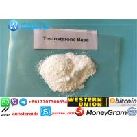 Testosterone Enanthate Steroid 58-22-0
