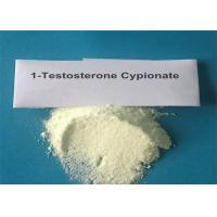 Pharma Grade Testosterone Anabolic Steroid 1- Testosterone - Cypionate White Powder