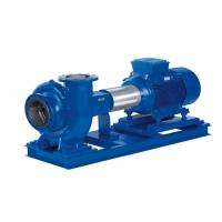 Ductile Iron No Clog Centrifugal Water Pump for Pumping Clean Water ISO9001