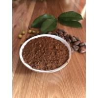 2 YEARS Shelf Life Unsweetened Alkalized Cocoa Powder 10%-14% Fat Content