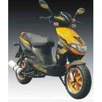 Wholesale Ctr  Scooter from china suppliers