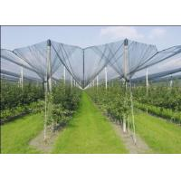 Quality Agriculture Dark Green HDPE Anti Hail Nets , 10% - 20% Shade Rate for sale