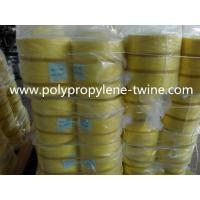 China UV-Protection Polypropylene Baler Twine Packing Rope Virgin PP Raw Material wholesale