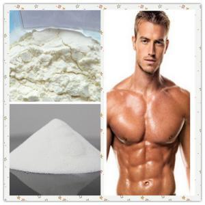 Natural Oral Progesterone Hormone Supplements For Men CAS 57-83-0