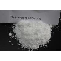 Wholesale Muscle Building Steroids Testosterone Enanthate Raw Powder with 100% Custom Rate from china suppliers