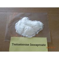 Wholesale Building Muscle Testosterone Isocaproate White Crystalline Powder Steroids 98.60% Assay from china suppliers
