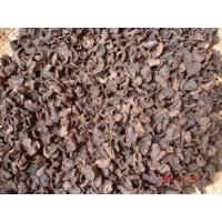 Wholesale DriedBlackTruffle from china suppliers