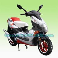 Wholesale 50cc(45km/h) SCOOTER 50QT-13 from china suppliers