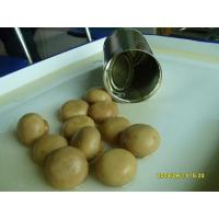 Wholesale Number:9115324016Name:Canned mushroom (whole)Memo:D.W.1500GSpec:2840gX6tinsClass:canned from china suppliers