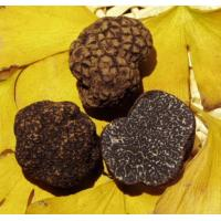 Wholesale Mushroom Truffle from china suppliers