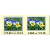 Wholesale + Digital Image Solutions from china suppliers