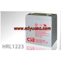 Wholesale CSB Battery HRL1223W from china suppliers