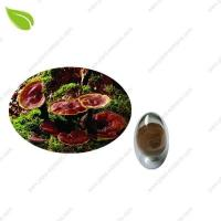 Wholesale Ganoderma Extract >herbal extract from china suppliers