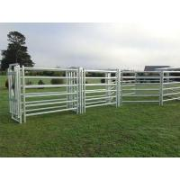 Cattle Panels