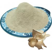 Wholesale Oyster mushroom powder from china suppliers