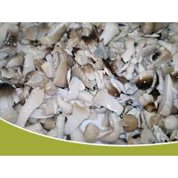 Wholesale canned straw mushroom broken from china suppliers