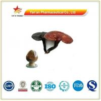 Wholesale Herb Reishi Mushroom Extract/Ganoderma Extract from china suppliers