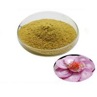 Allium tuberosum Rottler extract/Tuber Onion Seed Extract powder