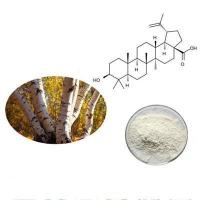 Buy cheap USP32 grade betulinic acid worldwide delivery goods return policy from wholesalers