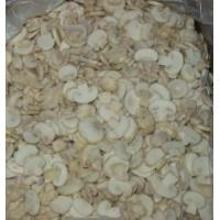 Wholesale Frozen mushroom from china suppliers