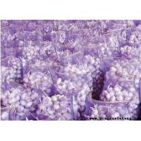 Wholesale Garlic 20kg/mesh bag Product Title:20kg/mesh bag from china suppliers