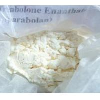 Wholesale Testosterones Enanthate from china suppliers