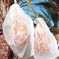 Dates bags