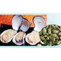 Wholesale shellfish Product name:Pacific Oyster from china suppliers