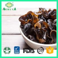Wholesale Cloud ear mushroom from china suppliers