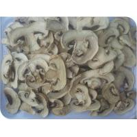 Wholesale Champignon from china suppliers