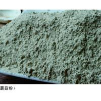 Wholesale Champignon Mushroom Powder from china suppliers