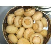 Wholesale Organic High Grade Canned Pickled Mushroom With Rich Nutrition Short Lead Time from china suppliers
